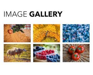 j-Gallery
